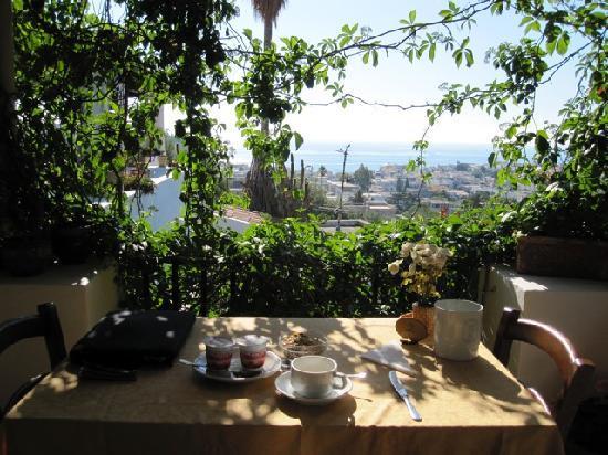 Villa Diana: my view at breafast