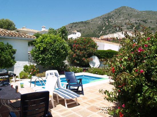 Roma Villa: The pool and sun terrace at the rear of the villa