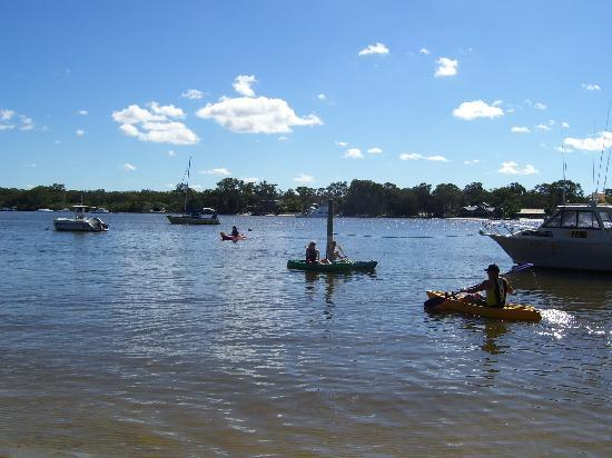 Sandy Beach Resort Noosa: Kayaking
