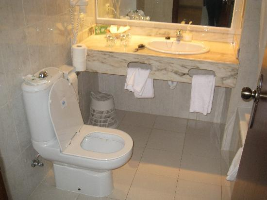 Protur Safari Park Aparthotel: Bathroom