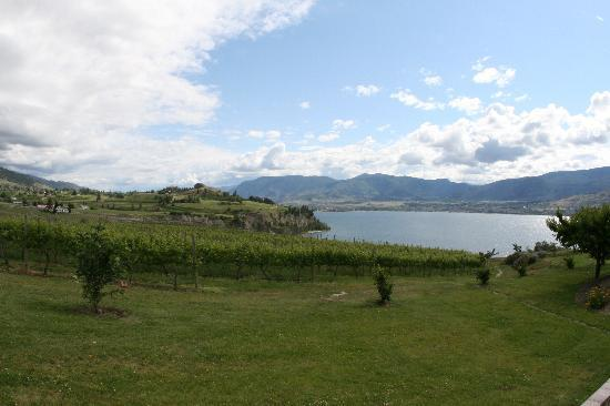 Poplar Grove Winery: The view from the winery