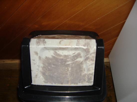 Palm Grove: Our kitchen bin