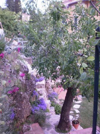 I Giardini Pensili B & B: giardino fiori