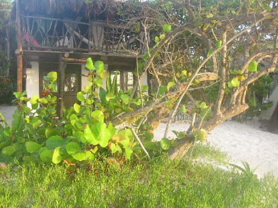 Playa Selva: outside of beach house