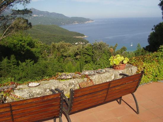 Bed & Breakfast La Collina: La vista dalla terrazza