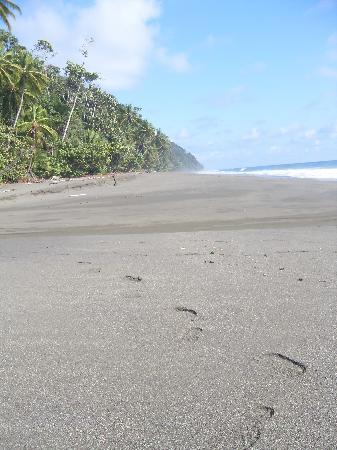 El Remanso Lodge: we were the only people on the beach as far as we could tell