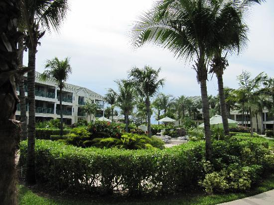 Sands at Grace Bay: Garden view