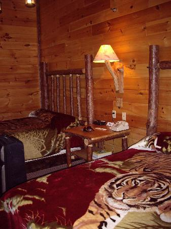 Jones Mills, PA: Double bed room with tiger covers