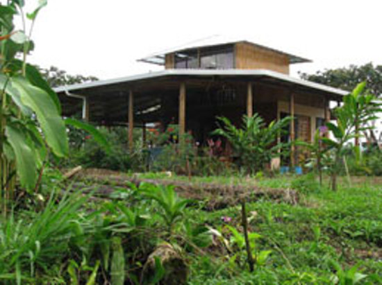 Finca Paz y Flora: the house as you come up the hill