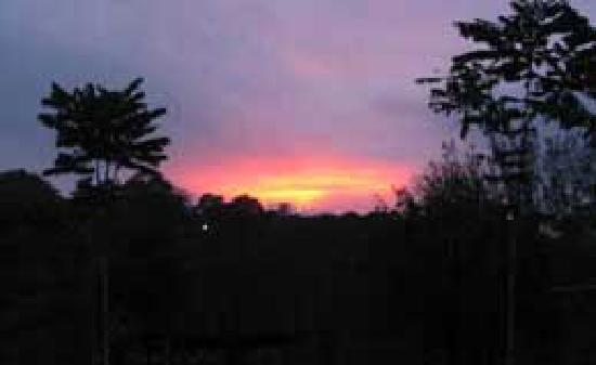 Finca Paz y Flora: a sunset on a clear night