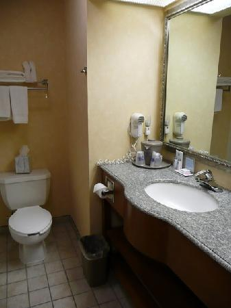 Hampton Inn Alamogordo : Bad