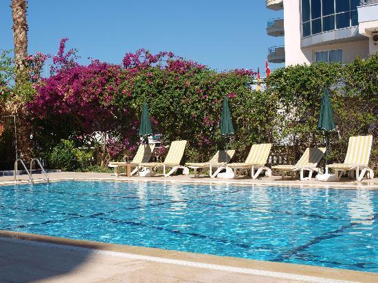 Bora Bora: The pool