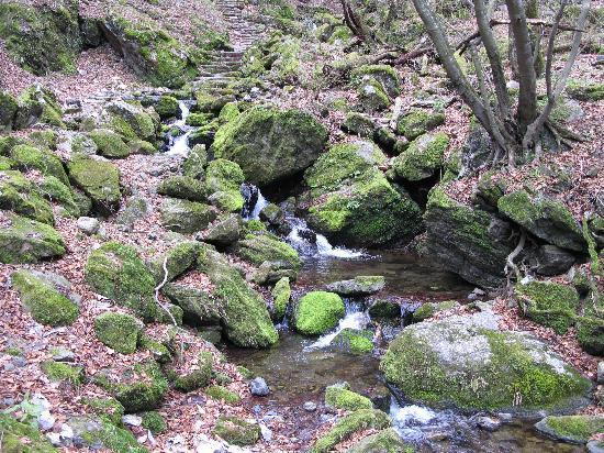 Sanrakuso: On the Rock Garden hiking path