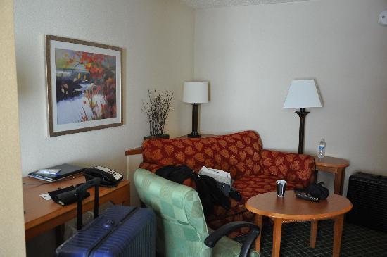 Fairfield Inn & Suites Austin South: Wohnbereich