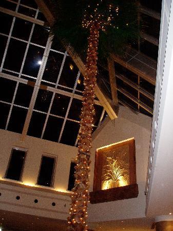 Okinawa Marriott Resort & Spa: エントランス等豪華な造りなのだが。。