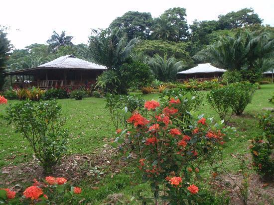 Casa Viva Beach Houses: grounds