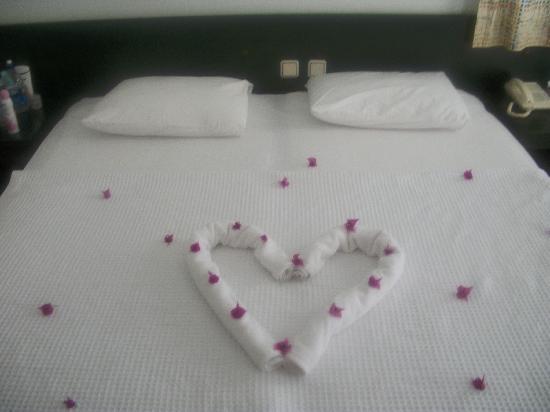 Nicholas Lodge Hotel: Our room
