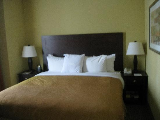 Homewood Suites Houston near the Galleria: comfy bed