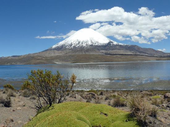 Parque Nacional Lauca: Lago Chungara & Vulkan Parinacota