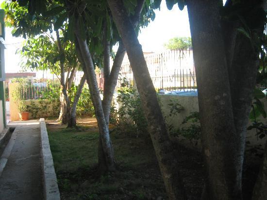 Guanabo, Kuba: gesuchter Schatten
