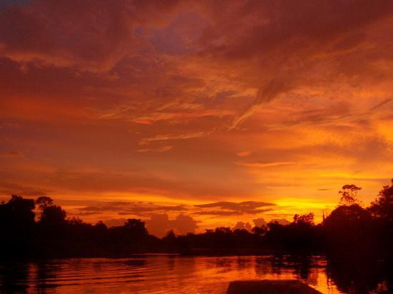Amazon Yarapa River Lodge : The River