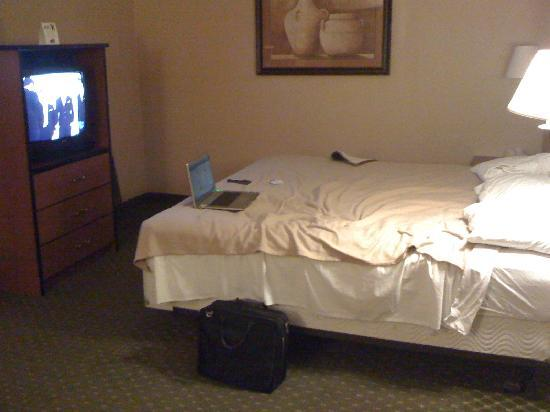 Travelodge Colorado Springs: king size bed with paper thin pillows.
