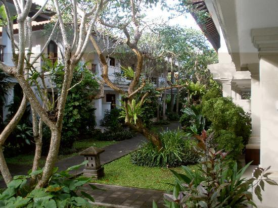Puri Raja: View of the gardens from our verandah