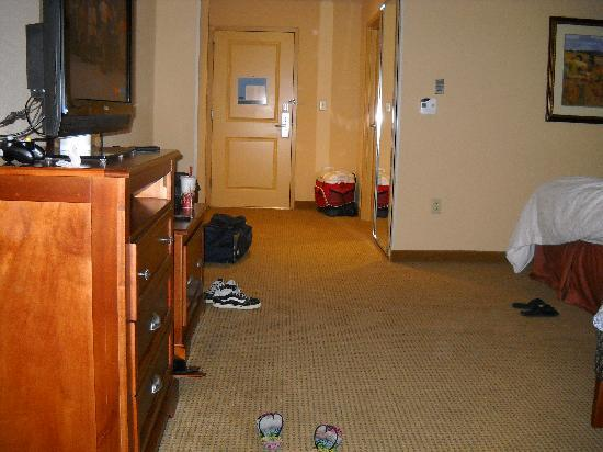 Hampton Inn & Suites Colorado Springs/I-25 South: Very nice sized room.