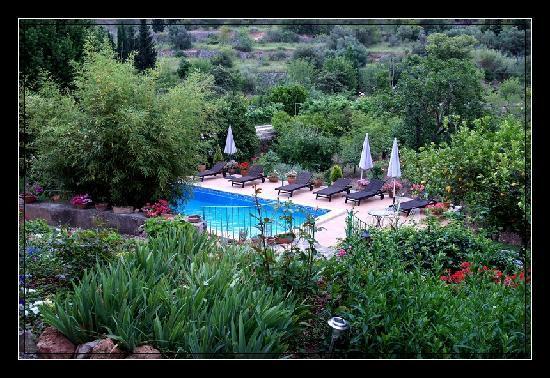 Agroturisme Finca Sa Maniga : Poolbereich