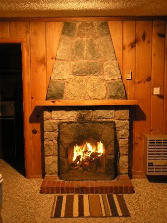 Bemidji, MN: Cozy Fireplace in Living Area