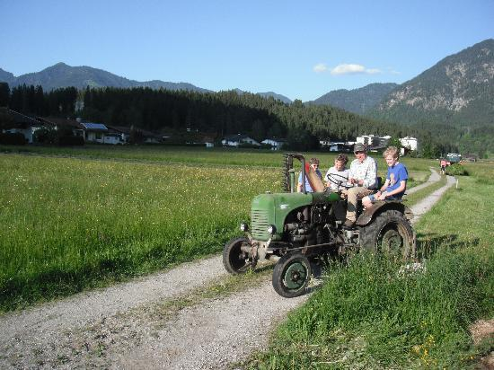 Gintherhof: Boys going for fresh grass for the cows