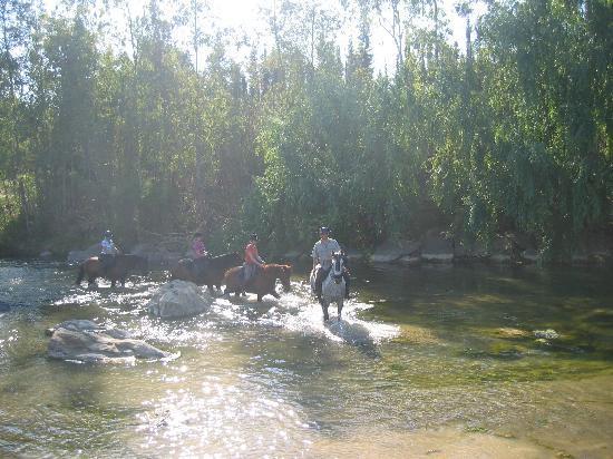 HorseridingSpain: Through the river - beautiful.