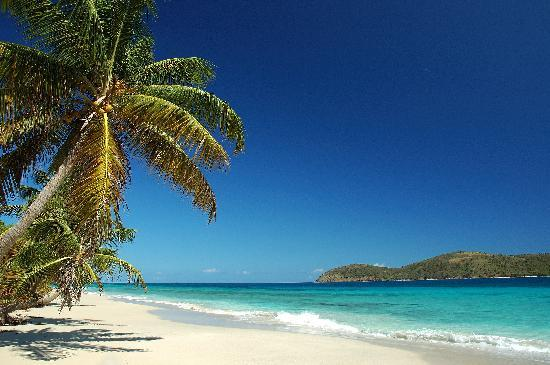 Culebra Puerto Rico Zoni Beach Neasting Place Of Sea Turtles