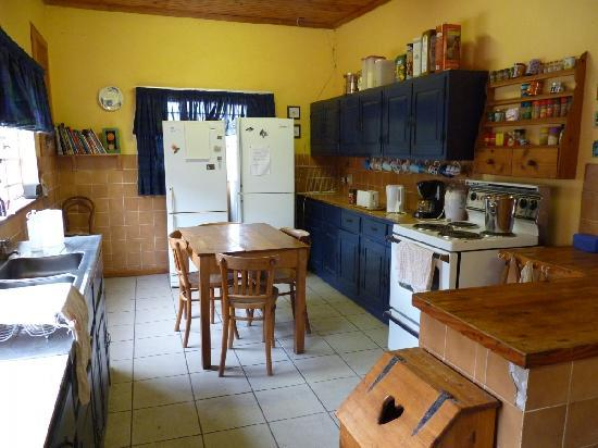 Orange Elephant Backpackers: Great kitchen