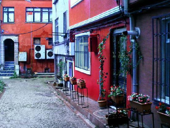 Topdeck Hostel: hostel (right) & street