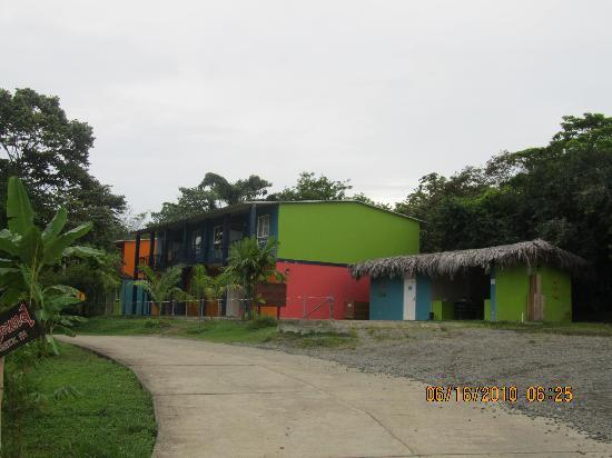 Red Frog Beach Island Resort & Spa: Bocas Bound Hostel