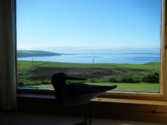 The Foveran: View from dining room window