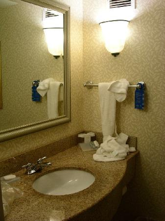 Hilton Garden Inn Auburn Riverwatch: bath 1