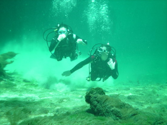 Halocline Diving