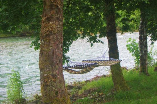 Casey's Riverside RV Park: another view of the river