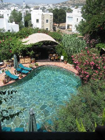 El Vino Hotel & Suites: Inviting!!!