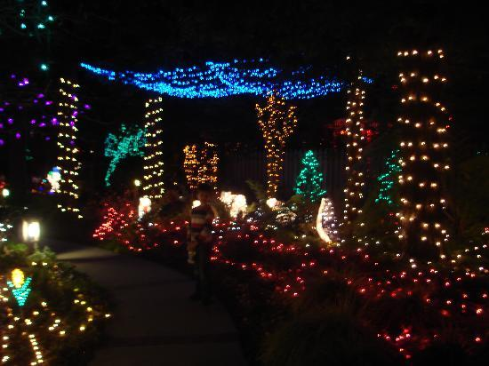 Christmas Lights - Picture of Cambria Pines Lodge, Cambria ...