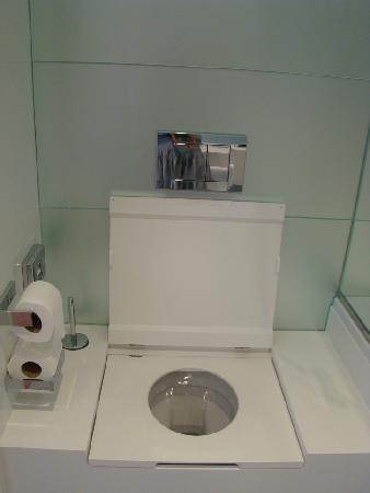Amfora, hvar grand beach resort: square shape toilet