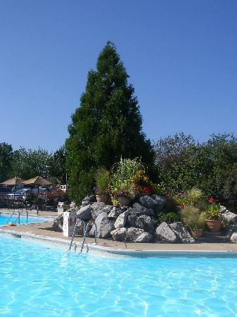 Eden Resort and Suites, BW Premier Collection: Outdoor pool