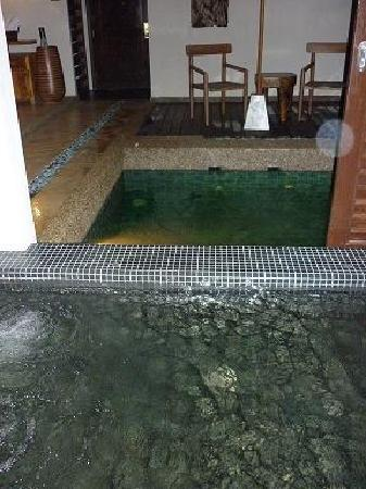 The Banjaran Hotsprings Retreat: Pool and Jacuzzi