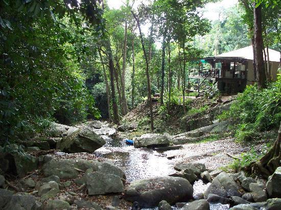 Cairns Reef 'n Rainforest B&B: Idyllic setting