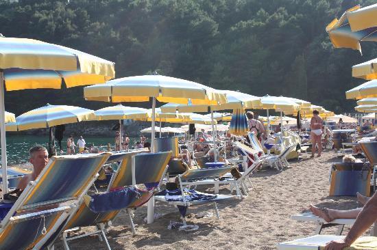 Hotel Montenegro Beach Resort: Stranda med gratis solseng og håndkle