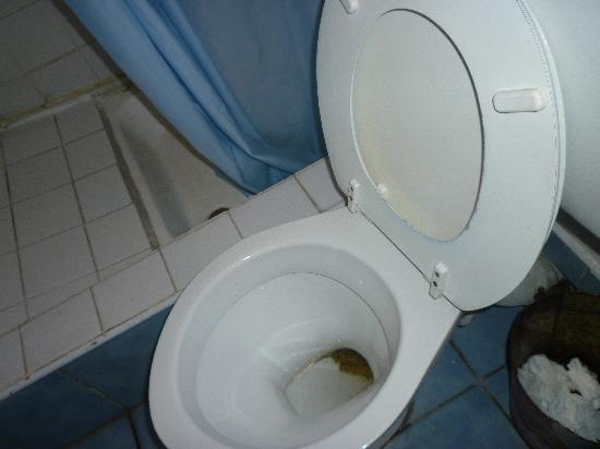 the toilet is really terrible Things cannot be flushed away