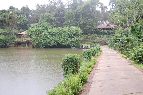 Orange County, Coorg : The cycling path