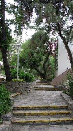 Club Med Bodrum Palmiye: Steps